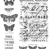Tim Holtz – CMS106 Papillon Cling Stamp Set..