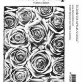Darkroom Door DDPS002 Roses Photo Stamp