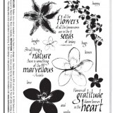 Darkroom Door DDRS004 Full Bloom Vol 2 Rubber Stamp Set