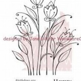 Woodware Clear Stamps – JGS336 Burst into Bloom**