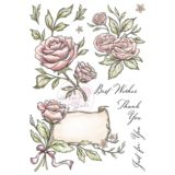 Wild Rose Studio – Antique Roses
