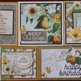 MC&S Card Kit – Garden Grove Kit 3