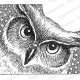 Impression Obsession – H2543 Star Owl Cling Stamp (cling)