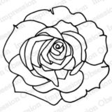 Impression Obsession – CL13627 Rose Trace (cling)