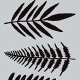 Darkroom Door Stencil – DDSS005 Ferns (small)
