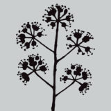 Darkroom Door Stencil – DDSS006 Blossom (small)