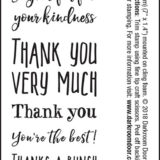Darkroom Door – DDSE002 Thank You Sentiment Stamps