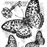 Woodware Stamps – FRS829 Three Butterflies